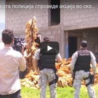 Финансиска полиција, ЕБР, хермелини и камиони... во скопско Љуботен се одземаше тутун