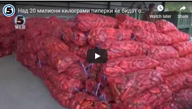 Над 20 милиони килограми пиперки ќе бидат откупени од земјоделците во Пелагонија