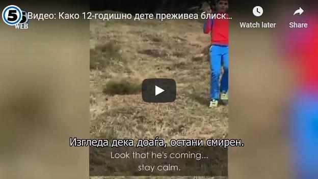 Видео: Како 12-годишно дете преживеа блиска средба со мечка