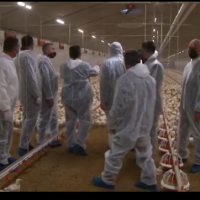 """Премиерот Заев на отворањето на """"Интернационал Фреш Фуд"""", за првпат во Македонија ќе има сериозно производство на домашно пилешко месо"""